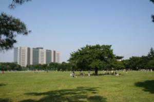 コムドット の地元がわかる公園の画像