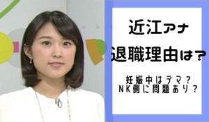 近江友里恵アナの退職理由はなぜ?同期の離職率が高くNHK側に問題あり&妊活が有力で妊娠中はデマ?