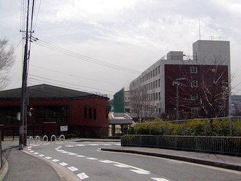 佐野雄大の高校