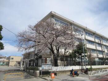 りこりこ(莉子)の小学校